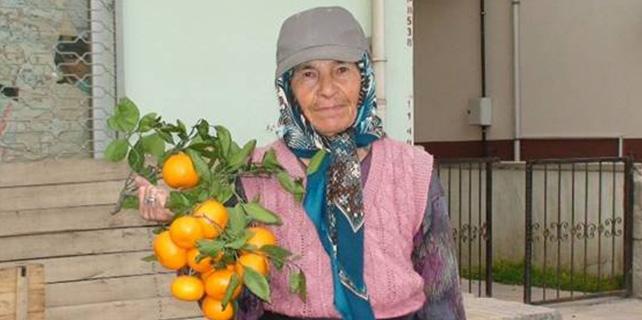 50 Yıldır Sebze Meyve Satıyor