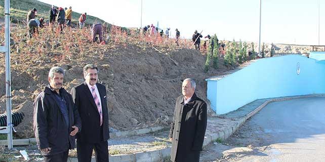 Cihanbeyli'de ağaçlandırma çalışmaları yapılıyor
