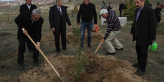 Ermenek'teki maden şehitleri için fidan dikildi