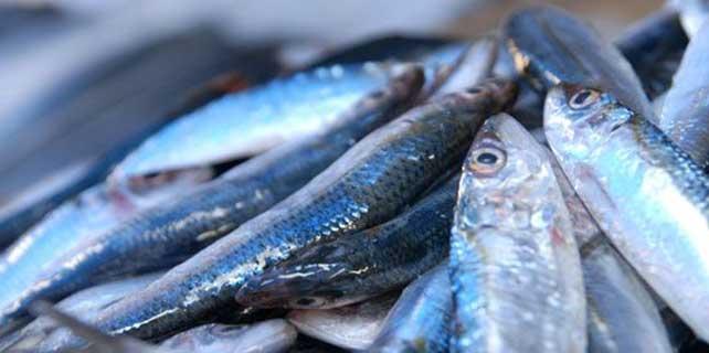 'Balık yedirerek çocuklarınızı astımdan koruyun'
