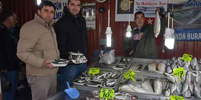 Fatsa'da balık fiyatları hareketli