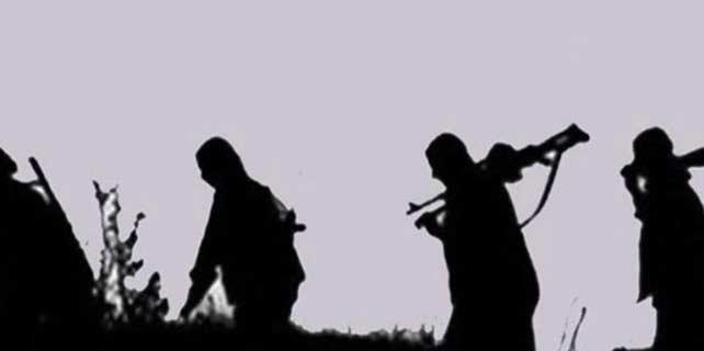 Hakkari'de iki PKK'lı teslim oldu