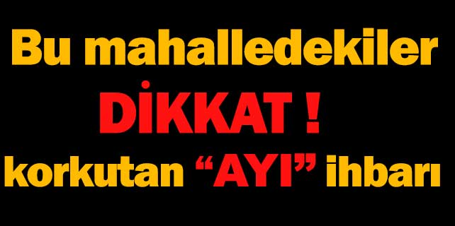 """Konya'da korkutan """"ayı"""" ihbarı"""