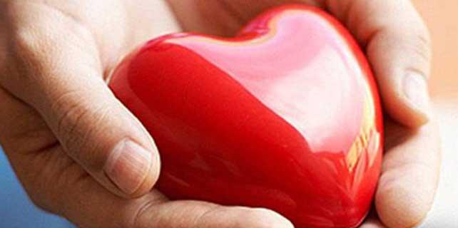 Kadavradan organ bağışı yüzde 22 arttı