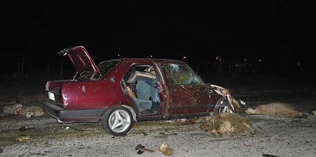 Polis'ten kaçan araç, koyun sürüsüne çarptı
