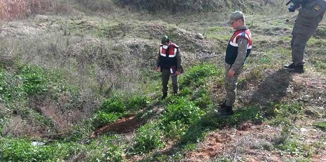 Karnındaki bebeği düşürüp gömdüğü iddiası