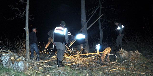 Konya'da, ağacın altında kalan işçi öldü
