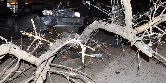 Konya'da otomobil ağaca çarptı
