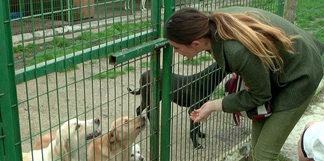 Nilay Dorsa, hayvan barınağını ziyaret etti