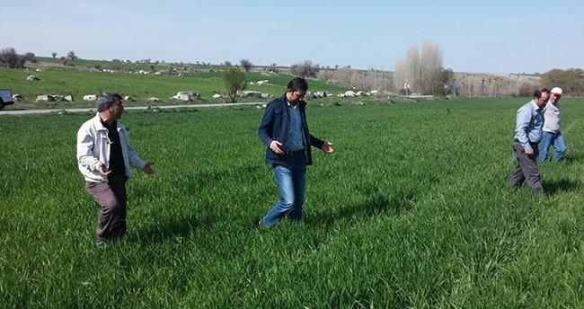 """Beyşehir'de çiftçilere """"kımıl"""" uyarısı"""