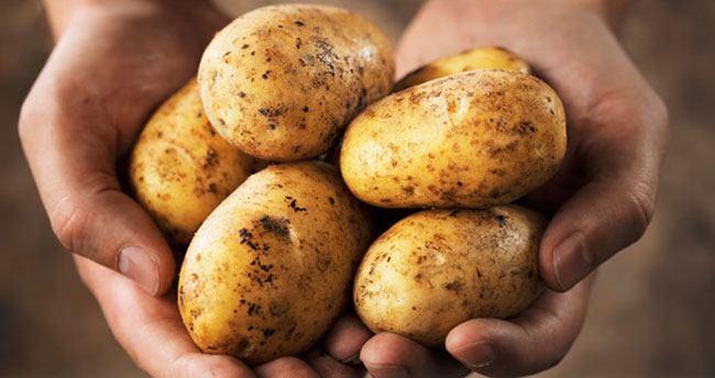 Patates üreticiyi zor duruma sokuyor