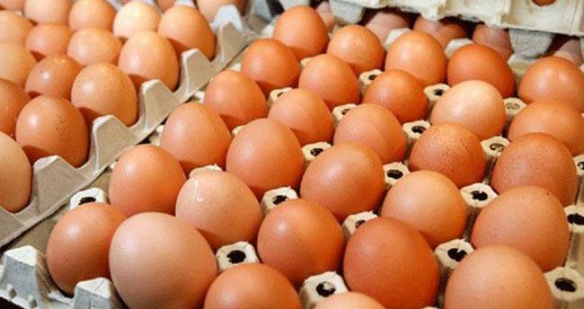Yumurta yemek için akıllı nedenler!