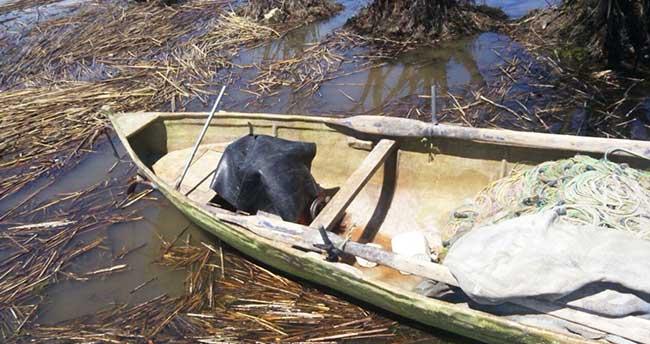 Beyşehir'de içinde balıkçı ağı bulunan tekne sahibine ceza