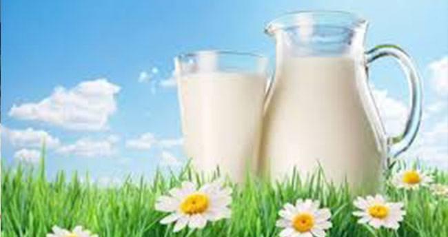 Dünya süt günü Karaman'da kutlandı