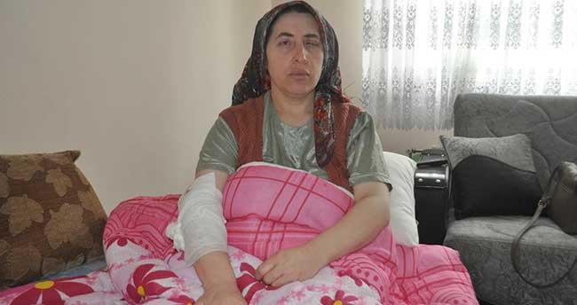 Eskişehir'de sokak köpeklerinin saldırısına uğrayan kadın yaralandı