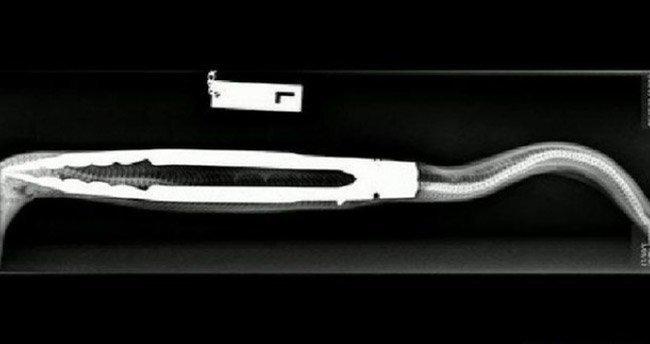 Evcil pitonun yuttuğu barbekü maşası ameliyatla çıkarıldı