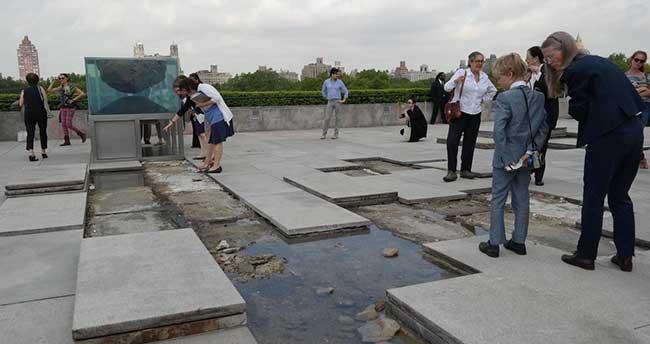 Fransız sanatçıdan müze çatısında 'sıradışı' sergi
