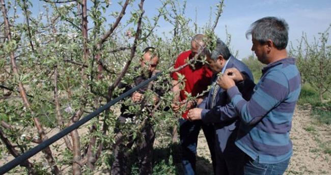 Karaman'da elma çıkmazı