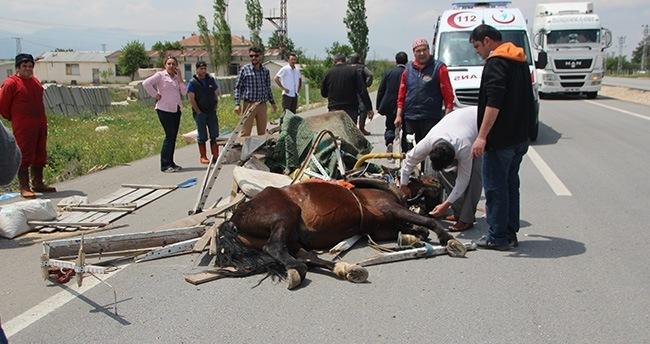 Karaman'da kamyonet at arabasına çarptı: 1 yaralı