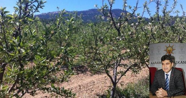 Karaman'da çiftçiye müjde