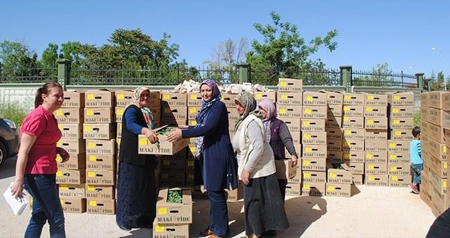Karaman'da üreticiye 160 bin fide dağıtıldı