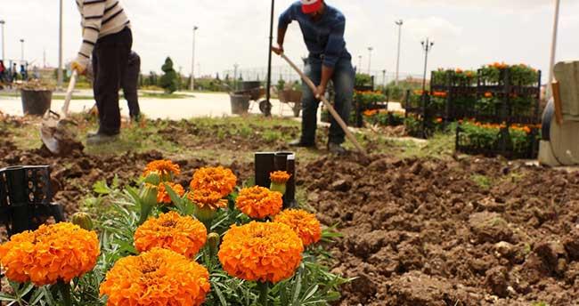Karatay'da parklar çiçeklerle donatıldı