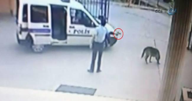 Komiser yardımcısı, karakol bahçesinde silahı ile köpek vurdu