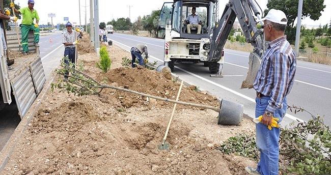 Karaman'da ağaçlandırma çalışmaları sürüyor
