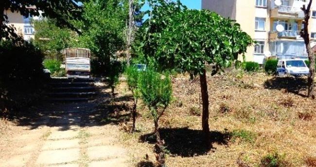 Seydişehir Belediyesi'nden İzinsiz Ağaç Kesenlere Ceza