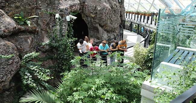 Tropikal Kelebek Bahçesi Bayramın 3. Açık Olacak