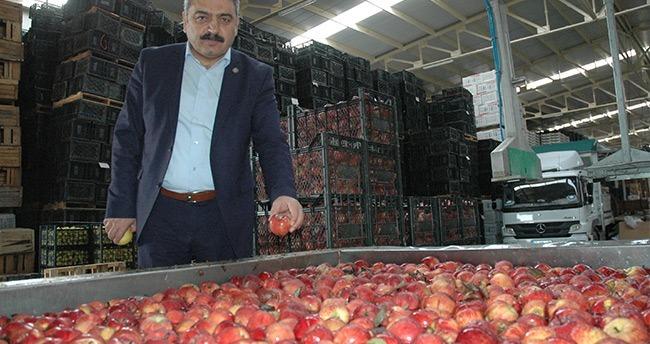 Karaman elma borsası olacak