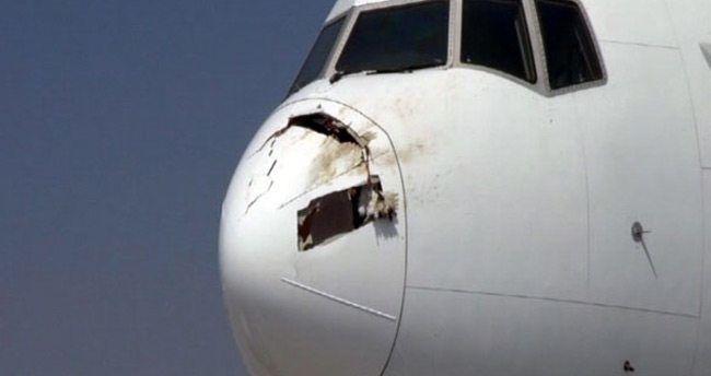 Uçağın burnuna leylek saplanınca acil iniş yaptı
