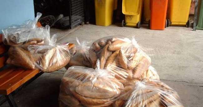 Her gün beş milyon ekmek çöpe atılıyor