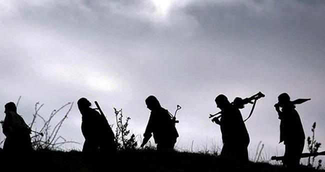 Muş'ta PKK'ya ağır darbe