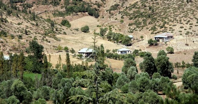 Adana'da başsız ceset bulundu