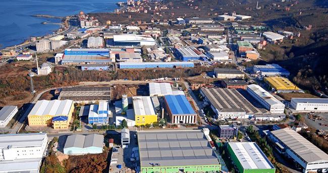 Doğu Karadeniz Bölgesi Ekonomisinde Organize Sanayi Bölgelerinin Yeri