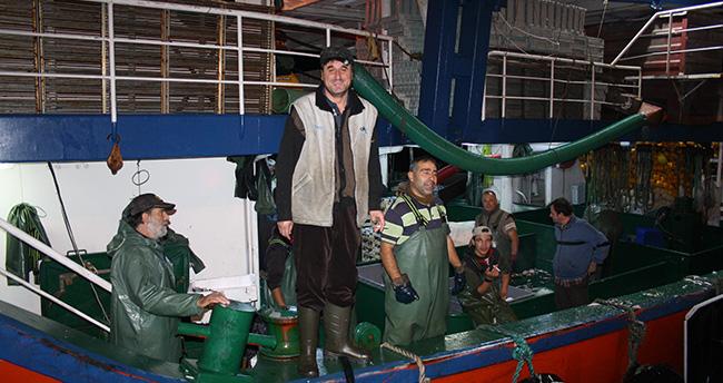 Hamsi Bolluğu Balıkçıların Yüzünü Güldürdü