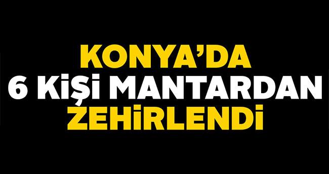 Konya'da 6 kişi mantardan zehirlendi
