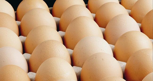 Tavuk Yumurtası Üretimi Eylül'de Arttı