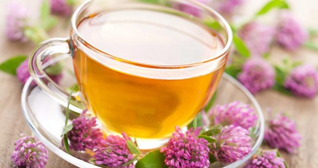 8 Derde Deva: Ekinezya Çayı