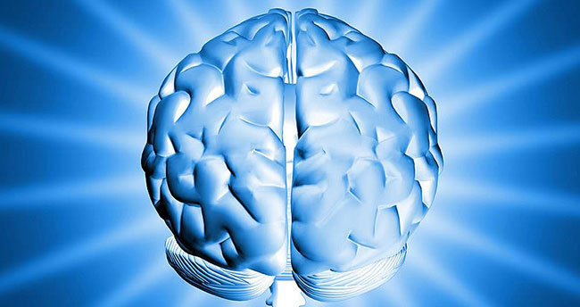 Alzheimer'a neden olan plakları temizleyen molekül bulundu