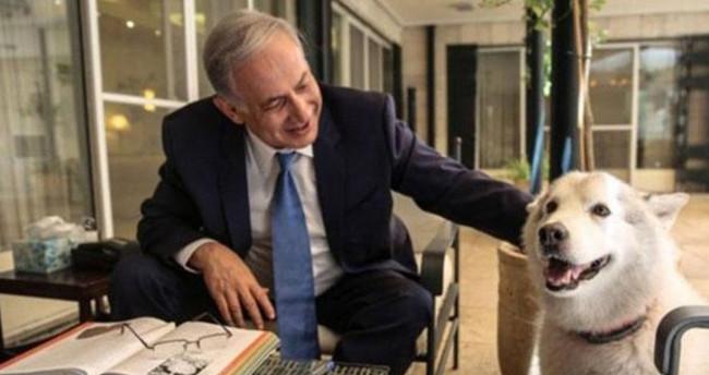 Netanyahu'nun köpeği Kaiya konuklarını ısırdı
