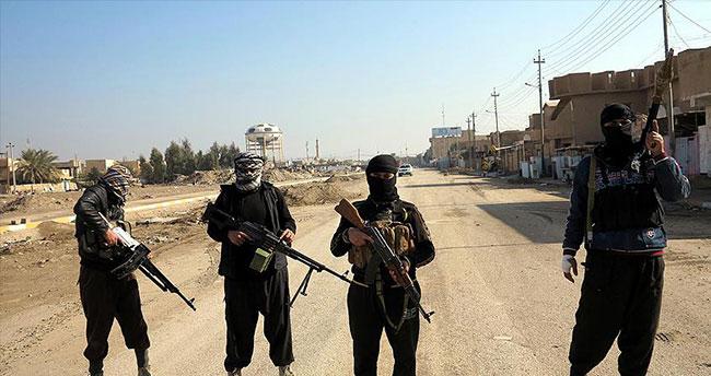 'DAEŞ 50 militanını idam etti'