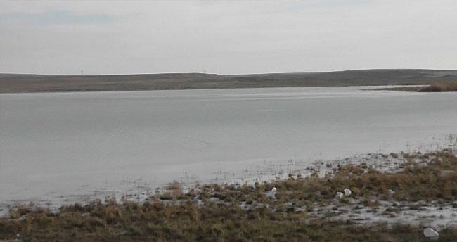 Düden Gölü Buz Tuttu Kuşlar Gitti