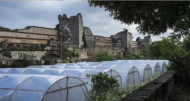 Yedikule Bostanları'ndaki seyyar barakalar ile seralar yıkıldı