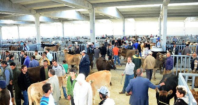 Konya'da Modern Hayvan Pazarı Ve Saman Borsası İlgi Görüyor