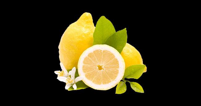 Limon çekirdeğine dikkat!