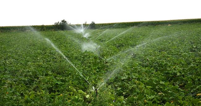 Tamamlandığında 190 bin 850 dekar arazi sulanacak