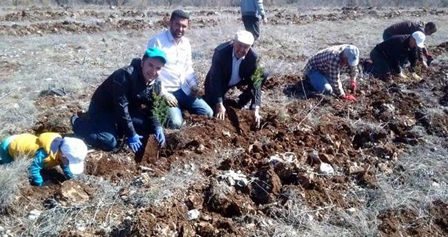 Konya'da ağaç dikme kampanyası