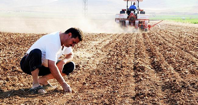 Konya Ovası'nda etkili olan yağmur çiftçiyi sevindirdi